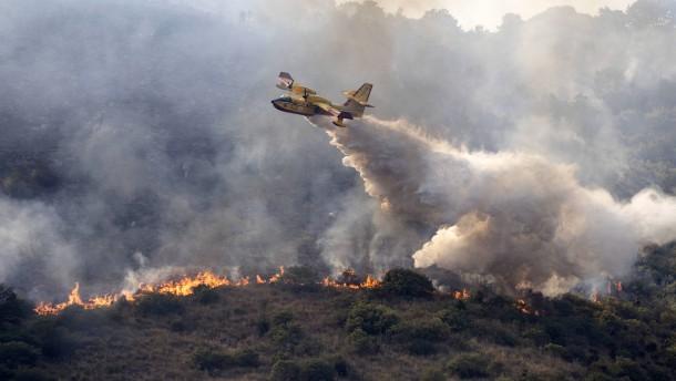 Feuer im Nationalpark nahe Rom