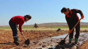 Schlimmste Dürre seit über 100 Jahren in Nordkorea