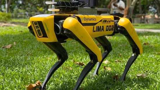 Hunde-Roboter erinnert an Abstandsregeln