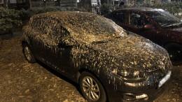Autobesitzer verzweifelt über Vogelkot