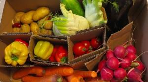 Gemüse per Post: Was taugt der Onlinehandel mit den Lebensmitteln?