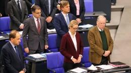 Schäuble maßregelt AfD