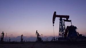 Der Triumph der Ölscheichs