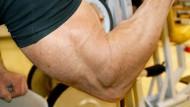 Künstliche Muskeln entwickeln Kräfte, die das natürliche Vorbild weit übertreffen.