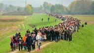 Beschwerliche Reise: Ein Flüchtlingstreck am Freitag nahe Brežicean der slowenisch-kroatischen Grenze