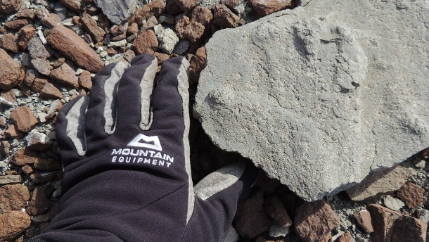 Spektakulärer Fund: 200 Millionen Jahre alter Saurier-Fußabdruck entdeckt