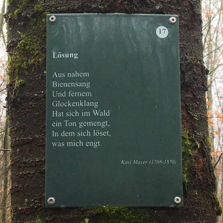 Poesie im Wald: Mit der Natur befassen sich viele Gedichte auf dem Laubacher Rundweg.