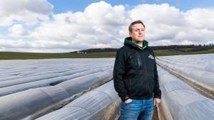 Wie der Klimawandel den Spargelanbau beeinflusst