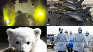 Libyen, Japan und Knut