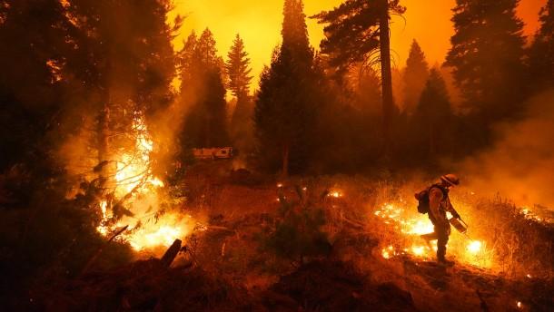 Die Flammen breiten sich immer weiter aus