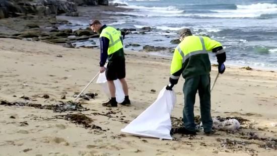 Strandgut in Australien angespült