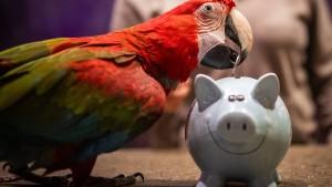 Welche Geldanlage empfiehlt sich für Einsteiger?