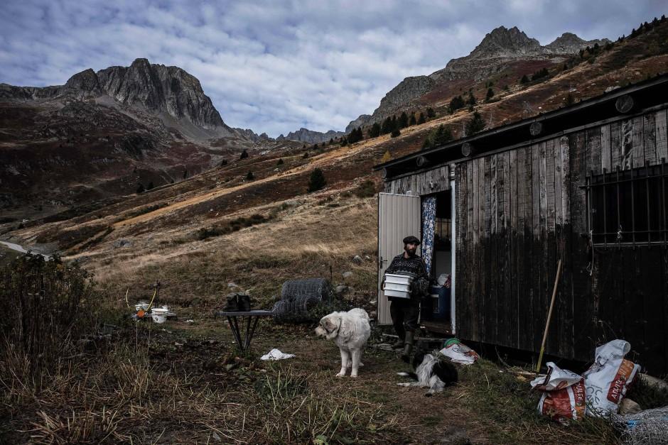 Der französische Schäfer Gaetan Meme, 24 Jahre alt, in den französischen Alpen vor seiner Hütte.
