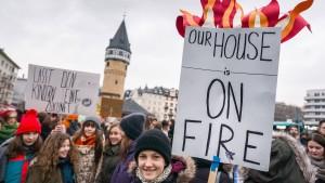 AfD kritisiert Schüler-Demos