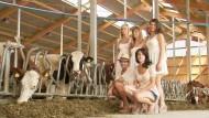 Posieren im Kuhstall