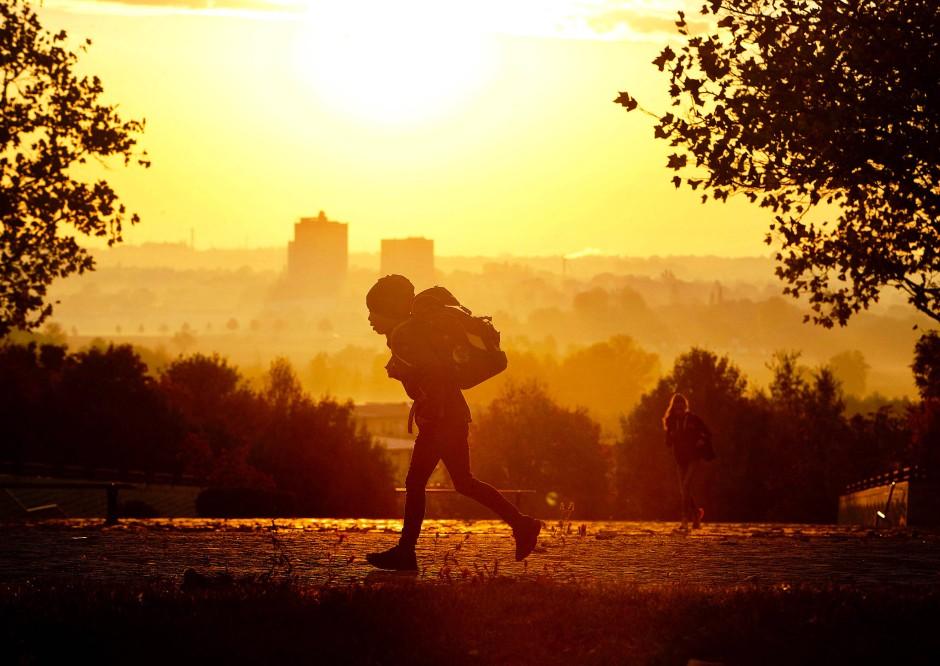 Goldener Schulweg: Ein Schüler läuft in den frühen Morgenstunden auf dem Riedberg zum Unterricht.