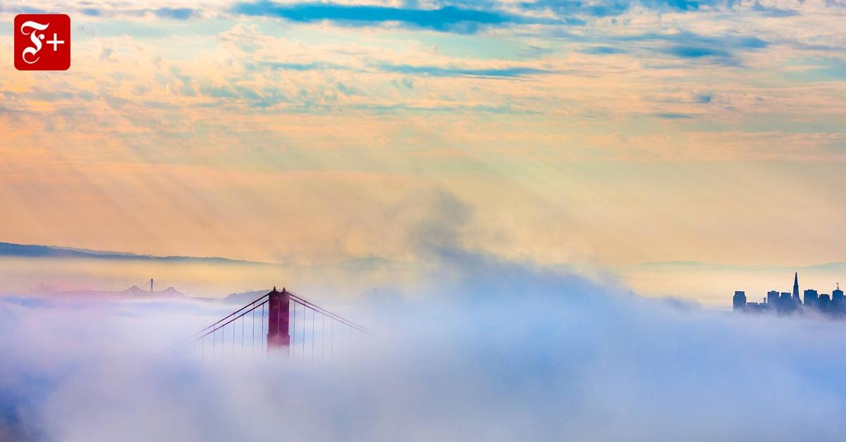 Obdachlose und Drogendealer: Der Niedergang von San Francisco