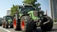 Bauern protestieren gegen Preisverfall