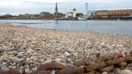 Niedrigwasser macht der Rheinschifffahrt zu schaffen