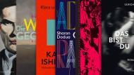 Literaturbeilage der F.A.Z.: Die wichtigsten Romane