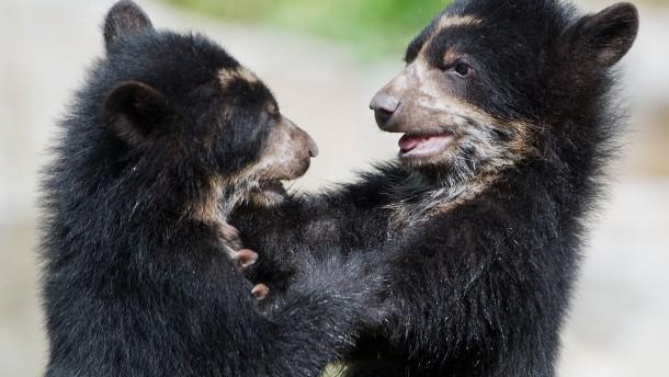 """""""Tiere sind für uns kein Eigentum"""""""