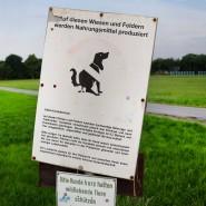 Kostspielige Entsorgung: Kotbeutel für Hunde sorgen für reichlich Plastikmüll (Symbolbild).
