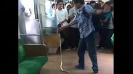 Schlangenfänger von Jakarta