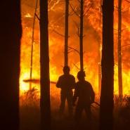 Verheerende Waldbrände forderten in Portugal 41 Todesopfer.