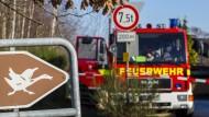 Verdacht auf Geflügelpest: Im bayerischen Roding könnte die Virusinfektion ausgebrochen sein.