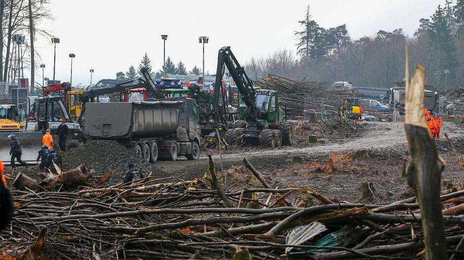 Austragungsort des Protests: der Dannenröder Forst
