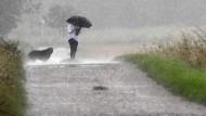 Rettungskräfte kämpfen mit Regenmassen