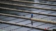 Arbeiter an den Vorklärbecken der Mainzer Anlage. In modernen Kläranlagen lassen sich viele, aber längst nicht alle Keime entfernen.