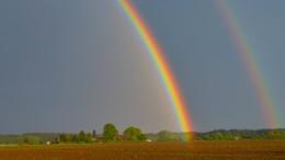 Bauern freuen sich über Regen im Mai