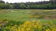 Aussichtsreich: Eingebettet in die Natur präsentieren sich die neuen Bahnen des Golfplatzes am Hofgut Georgenthal.