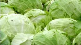 Gemüsegarten im All