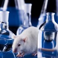 Von Mäusen und Menschen: Auch Wissenschaftler werden neuerdings beobachtet - von Großverlagen
