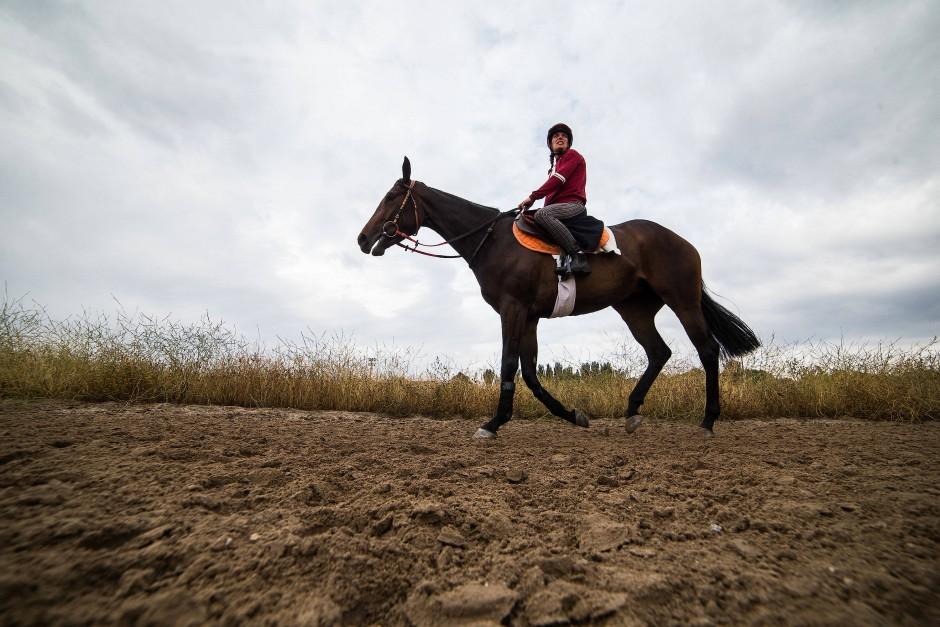 Das Pferd: Bereits das Aufschwingen ist eine Tortur.