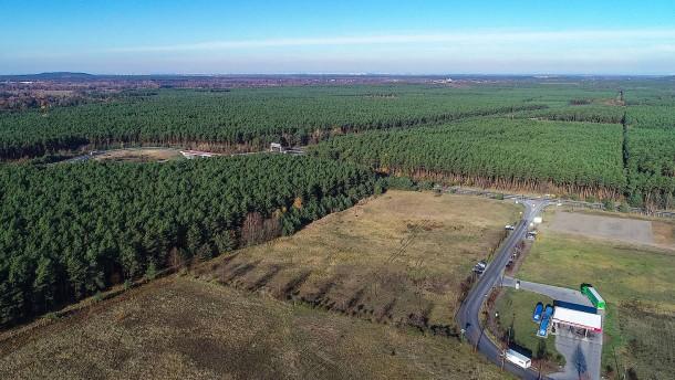 Tesla reagiert auf Proteste gegen Waldrodung