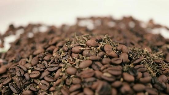 Ein Tässchen Cannabis-Kaffee zum Frühstück?