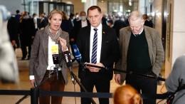 Wie die AfD die Störer in den Bundestag schleuste