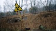 Ein Strahlenwarnzeichen in der Sperrzone rund um das explodierte Atomkraftwerk Tschernobyl