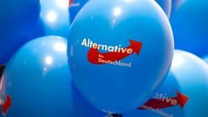 AfD-Europakandidat soll Professorentitel zu Unrecht führen