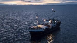 """Die Bootsflüchtlinge und die """"Clandestini"""""""