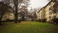 Luftig: In den Siedlungen der Nachkriegszeit, wie hier im Dornbusch, wurde sehr großzügig mit Platz umgegangen.