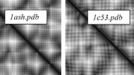 Figure 1. Examples of distance matrices from different proteins