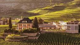 Weinanbau für die wahren Helden am Everest