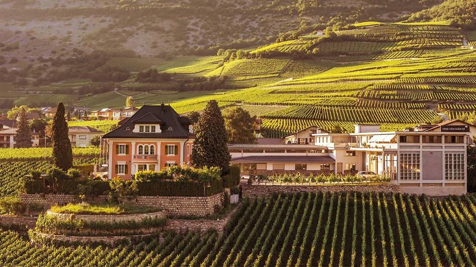 Domaines Chevaliers: Patrick Z'Brun hat das Weingut in der Walliser Gemeinde Salgesch im Jahr 2008 übernommen.