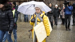 """Warum Greta Thunberg jetzt """"Atomlobbyismus"""" vorgeworfen wird"""