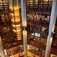 Nicht immer zuverlässige Quellen: Wissenschaft muss auf solide Veröffentlichungen setzen. Universitätsbibliothek in Toronto