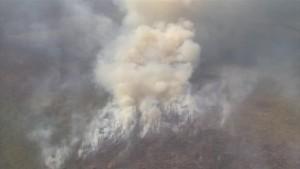 Sibiriens Wälder brennen
